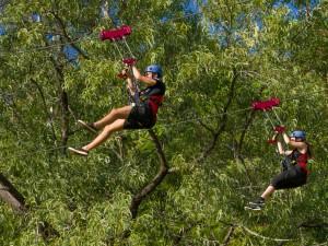 Cairns Adventure Park Flying Leap Mega zip line (1 of 1)-11