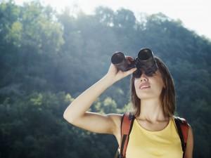 cairns adventure park bird watching