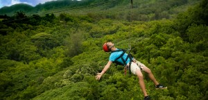 cairns-adventure-park-header-for-attractions